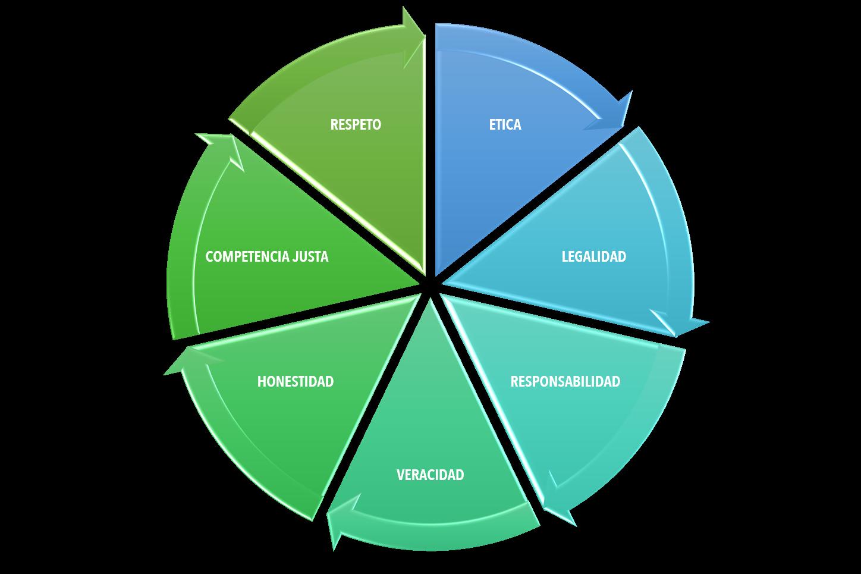 Los 7 principios